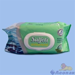 Салфетки влажные Salfeti антибактериальные очищающие с пластиковым клапаном (120шт/16уп), 30646