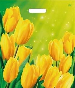 "П-выр.ручка 38х45-60мкм ""Солнечные тюльпаны"" (50/500) ТИКО"
