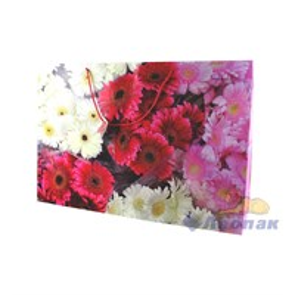 F1042 Пакет ламинир. 62*42*15  Цветы  (20шт/6уп)