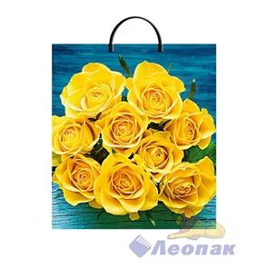 Пакет с пластик.ручками 36х37  Солнечное настроение  ламиниров.(10/100) ТИКО