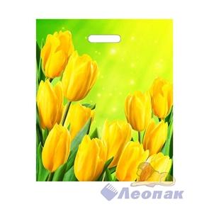 П-выр.ручка 38х45-60мкм  Солнечные тюльпаны  ПВД (50/500)ТИКО