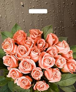 П-выр.ручка 38х45-60мкм  Розы после дождя   (500) ТИКО