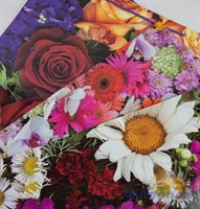 F1043 Пакет ламинир. 42*62*15  Цветы  (20шт/6уп)