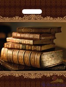 П-выр.ручка 31х40-60мкм  Книги NEW  ламинат (500) ТИКО