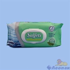 Salfeti antibac в/с антибактериальные с пластиковым клапаном (72шт/20уп), 48397