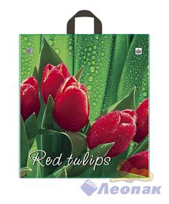 П-петл.ручка 40х43,5-35мкм Красный тюльпан (50/500)ТИКО