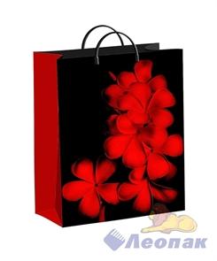 Пакет мягкий пластик с пластик.ручками 40х30   Экзотик  (40) ТИКО